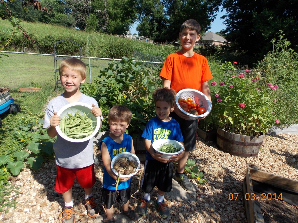 kids harvesting veggies