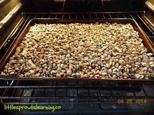 roasting sunflower seeds