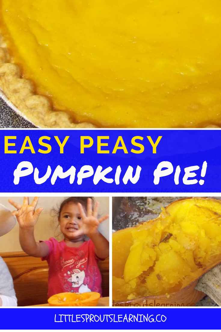 Easy Peasy And Fun: Easy Peasy Pumpkin Pie-Cooking With Kids!