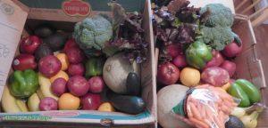 produce gathering