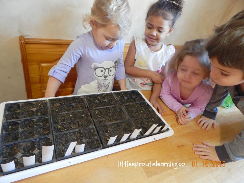 kids checking on seedlings
