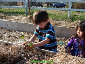 children planting spring seedlings