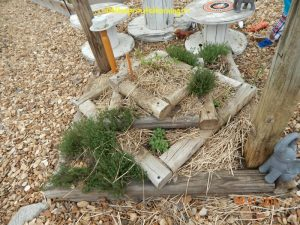 april herbs in the children's garden