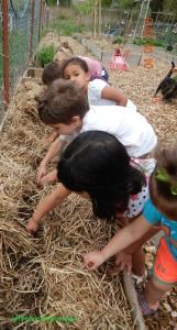 gardening with kids april