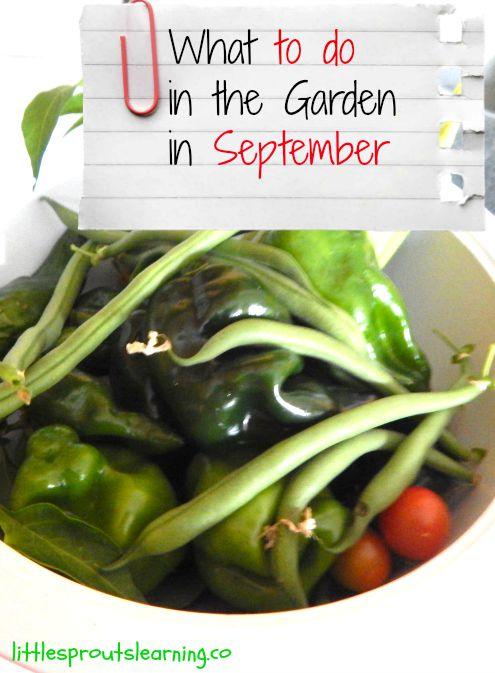 September garden chores