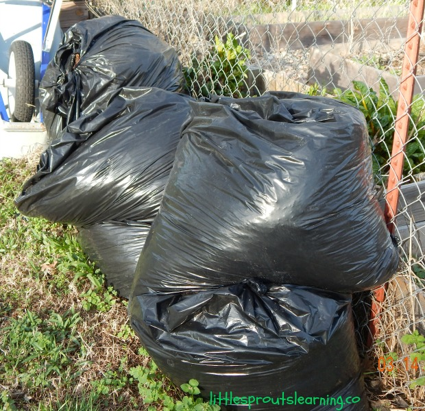 bags of leaves for garden mulch and compost