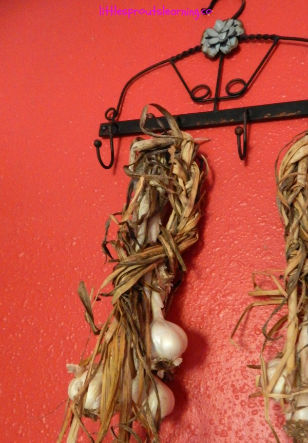 proper garlic storage