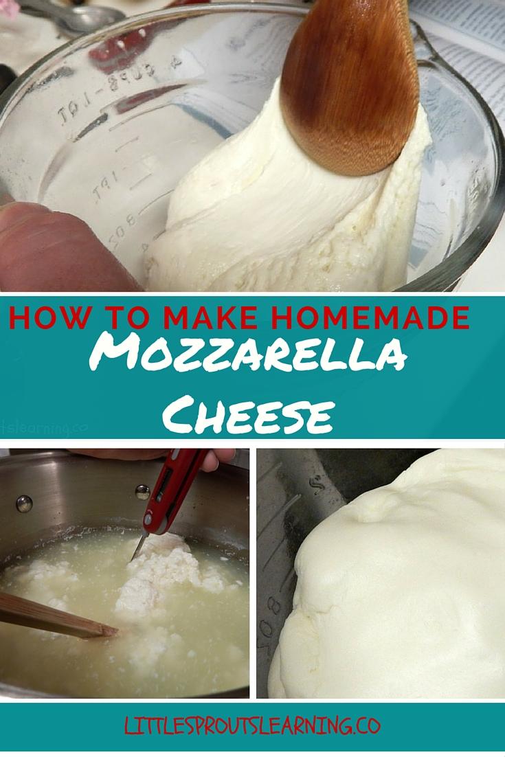 How to Make Homemade Mozzarella Cheese