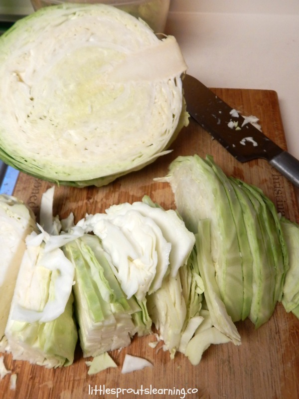 Best Cabbage Recipe