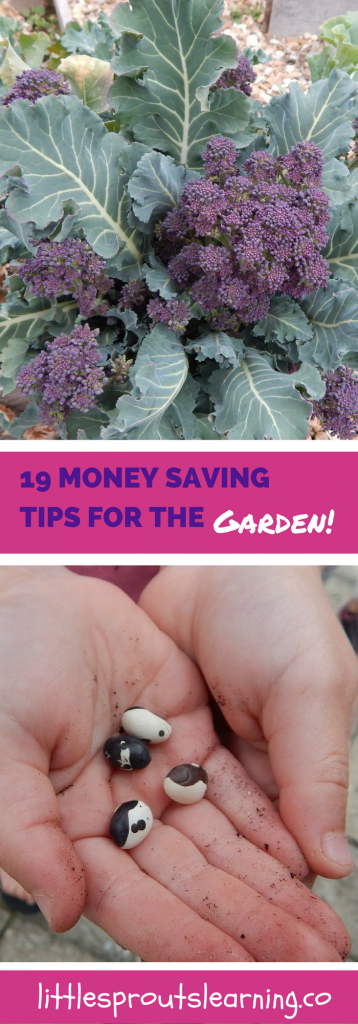 19 Money Saving Tips for the Garden