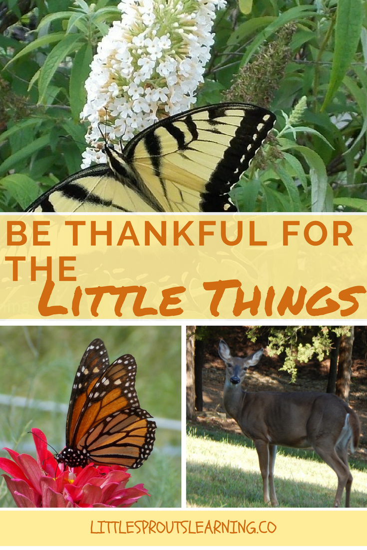 be-thankful-for-the-little-things