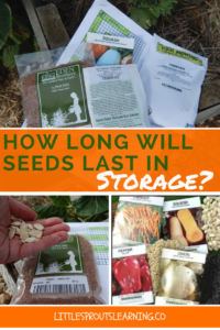 How long will seeds last in storage? Where and how can seeds be stored?