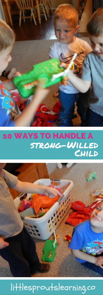 10 Ways to Handle a Strong-Willed Child