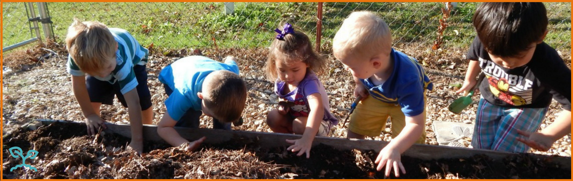 Little Sprouts Learning Header