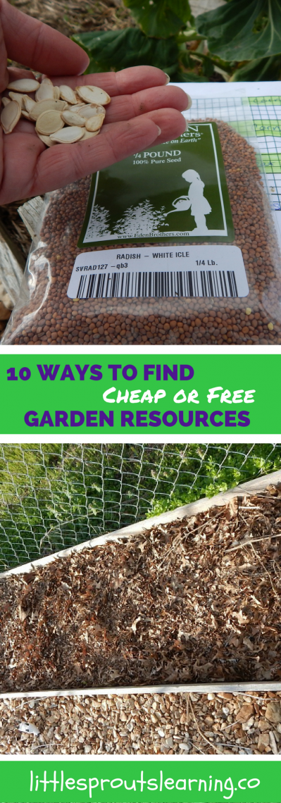 10 Ways to Find Cheap or Free Garden Resources