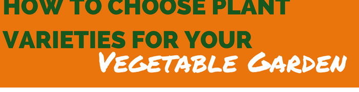 How to Choose Plant Varieties for your Vegetable Garden
