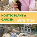 How to Plant a Garden with Kids