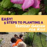 EASY! 5 Steps to Planting a Sensory Garden for Kids