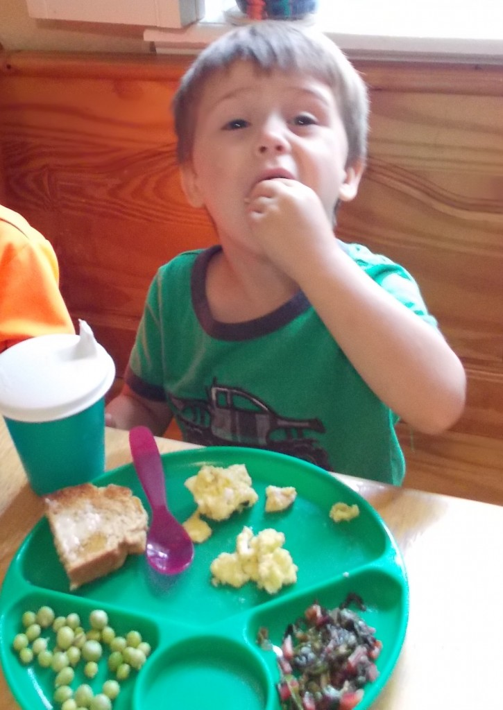 child eating a well balanced meal