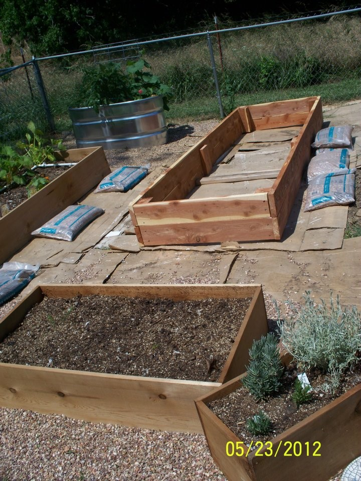 4 Steps to Start a Children's Garden in Your Daycare, several raised beds being built.