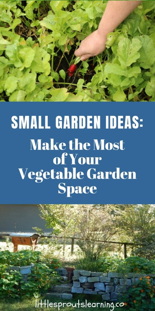 Sometimes it's hard to find enough space to grow everything you'd like. Check out these small garden ideas to make the most of your vegetable garden space.