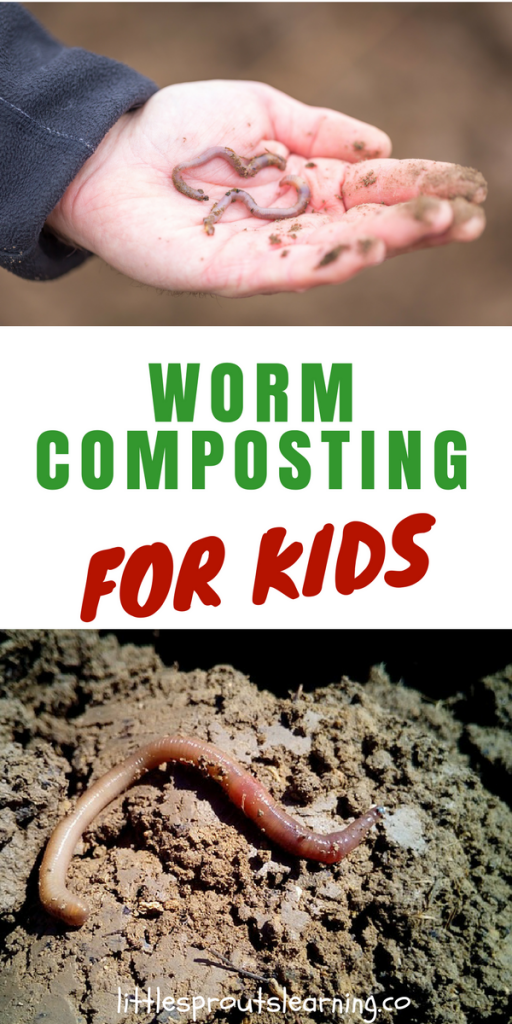 Worm Composting for Kids