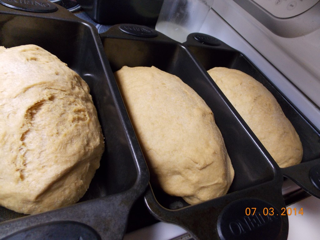 Making multiple loaves of bread at once with a breadmaker