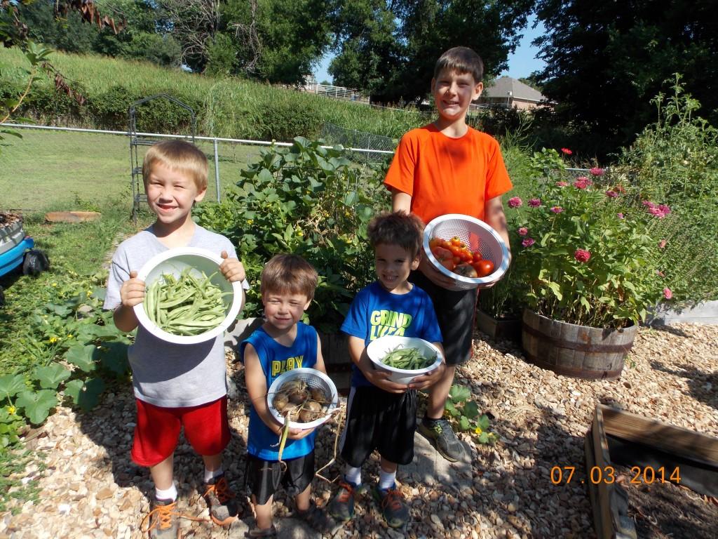 kids harvesting veggies