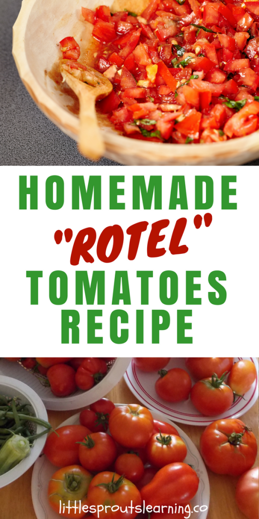 Homemade Rotel Tomatoes Recipe