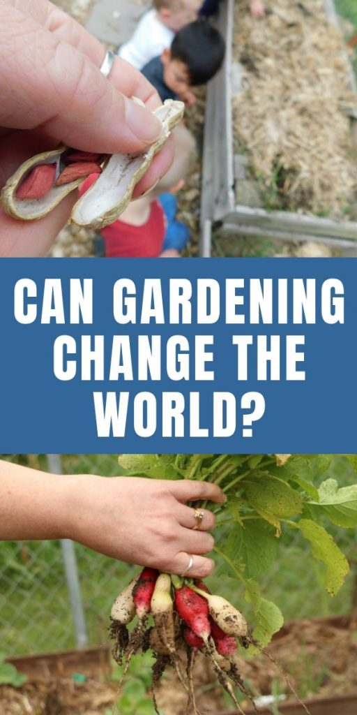 People-plant relationships, do plants really affect humans? What is the importance of gardening and planting things? Does tending living thing affect humans? Could gardening change the world?