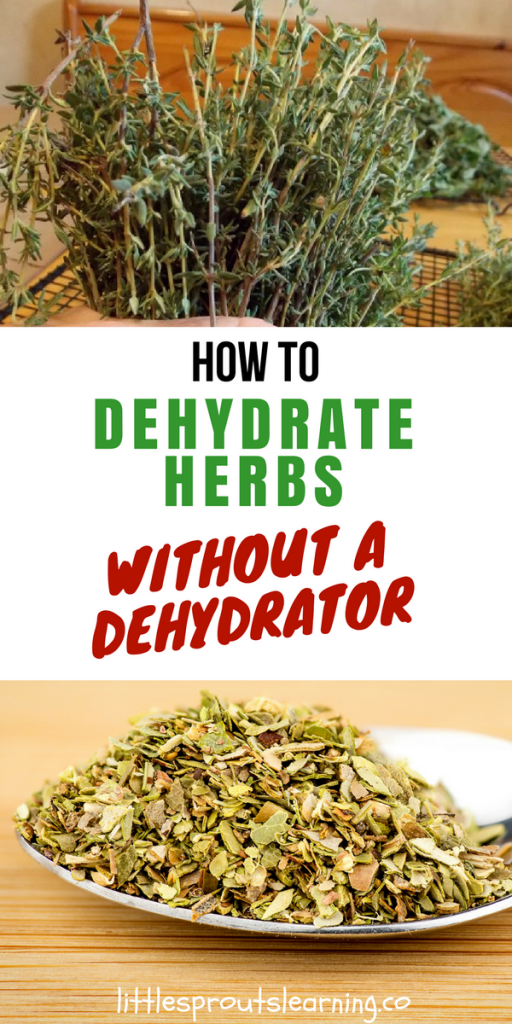 How to Dehydrate Greens and Herbs and Make Homemade Green Powder
