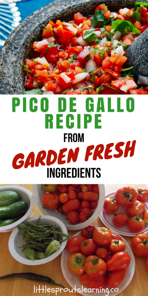 Pico de Gallo Recipe from Garden Fresh Ingredients