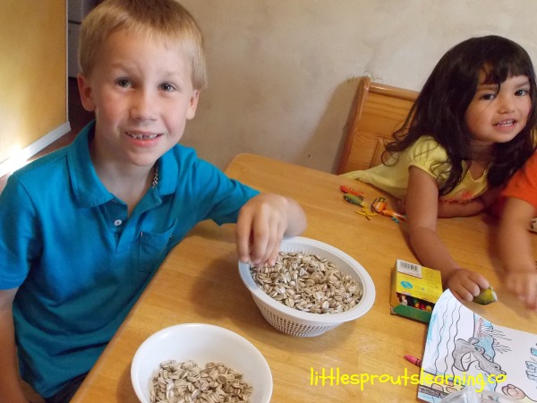 kids sorting sunflowers in a bowl