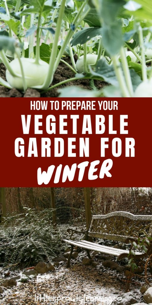 If you prepare your vegetable garden for winter, you'll have a much better spring garden. Fall garden clean up makes the following season more successful.
