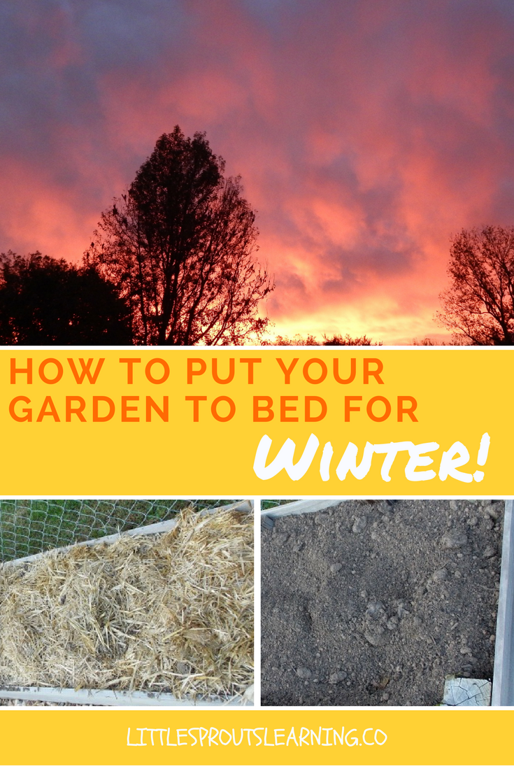 How to Put your Garden to Bed for Winter