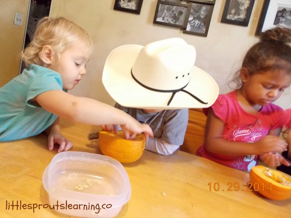kids removing pumpkin guts from a pumpkin at the table to make kid-friendly pumpkin pie