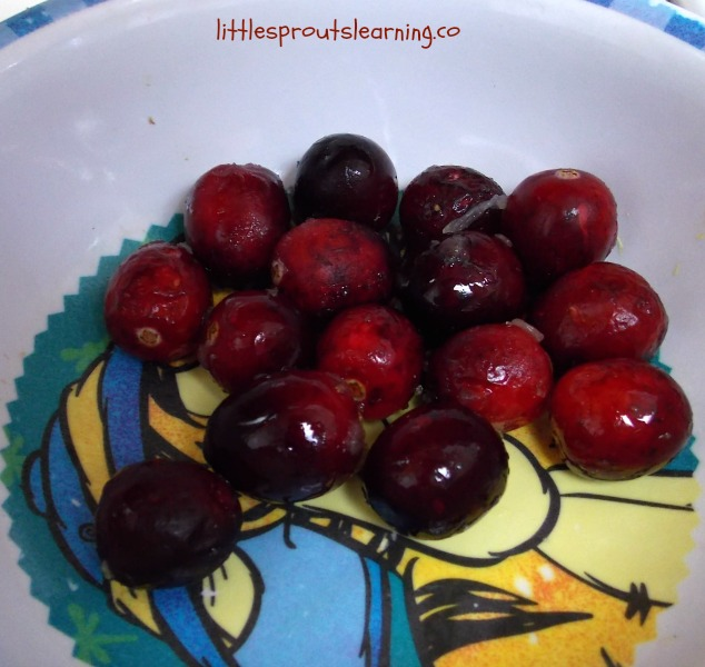 Best cranberry sauce recipe, bowl of fresh cranberries