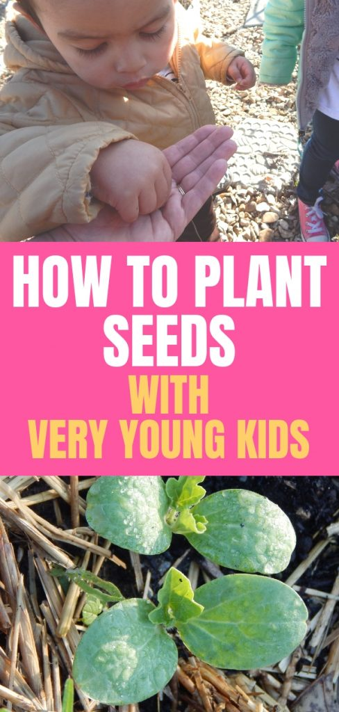 It takes a little finesse and a lot of patience to plant seeds for the garden with very young children, but there is so much for children to learn in the garden.