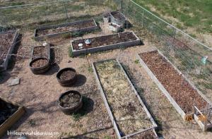spring garden planning