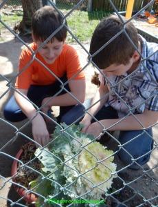 teenage gardeners