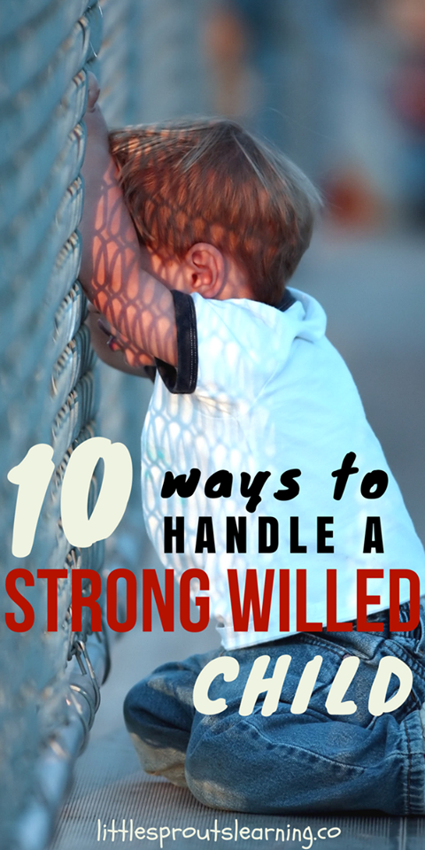 10 Ways to Handle a Strong-Willed Child - Little Sprouts