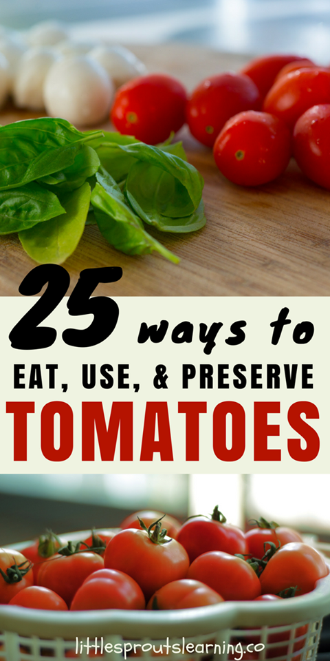 25 Ways to Use Excess Tomatoes from the Garden