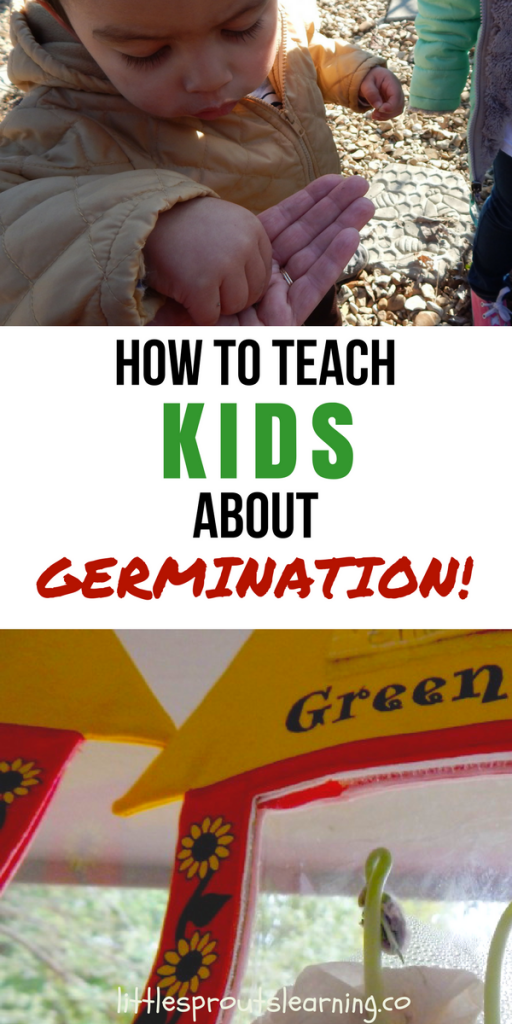KIDS ABOUT GERMINATION!