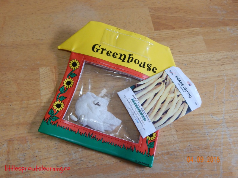 plastic window greenhouse and seed packet