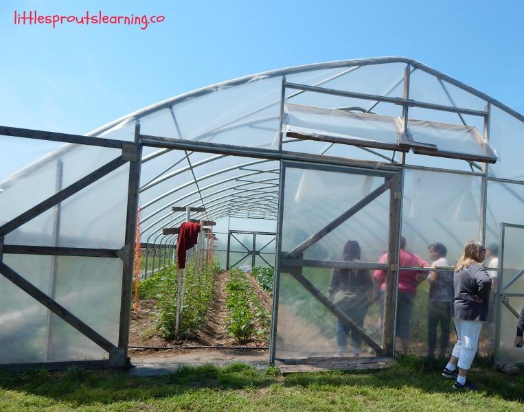 hoop house garden tour