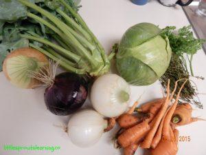 june harvest onions