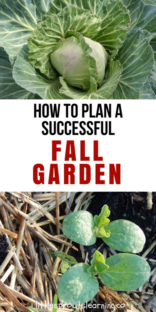 How to Plan a Successful Fall Garden