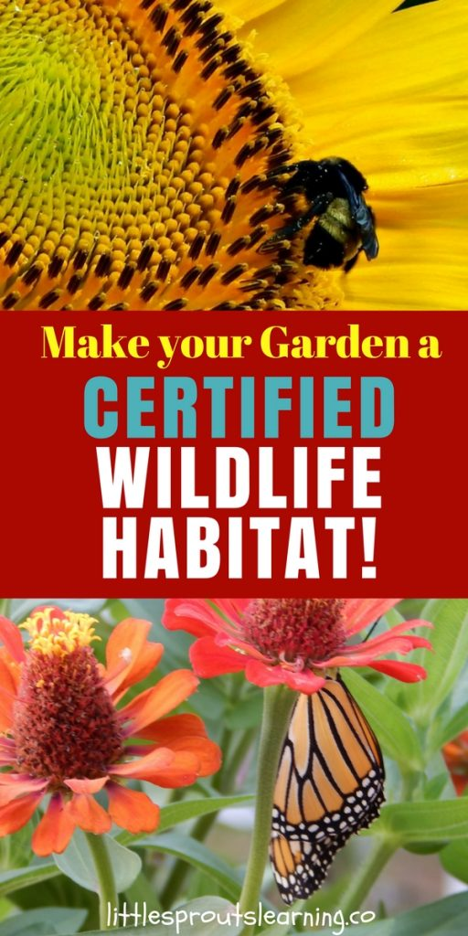 Make your Garden a Certified Wildlife Habitat!