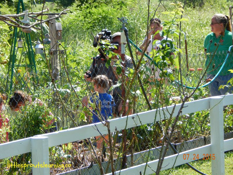 filming oklahoma gardening at little sprouts