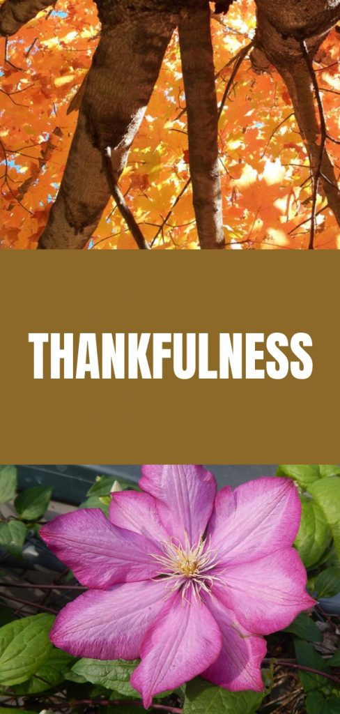 Thankfulness-How to Practice Being Thankful
